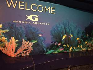 Welcome to the Georgia Aquarium!
