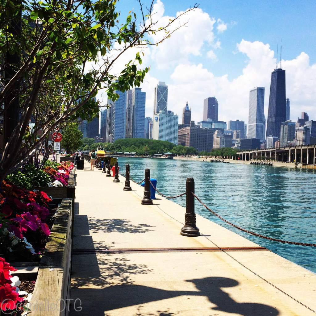 Pretty in the City. The Chicago skyline on a clear day can't be beat.