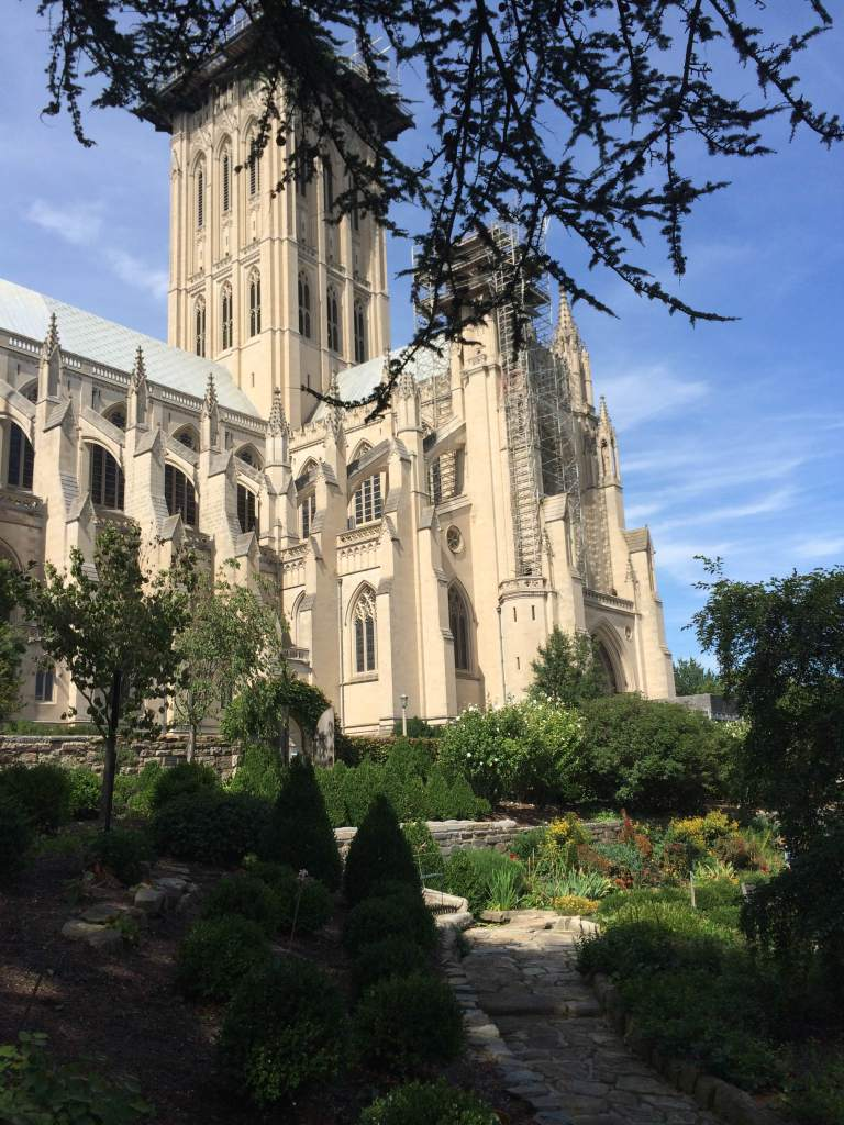 View of the cathedral from the Bishop's Garden