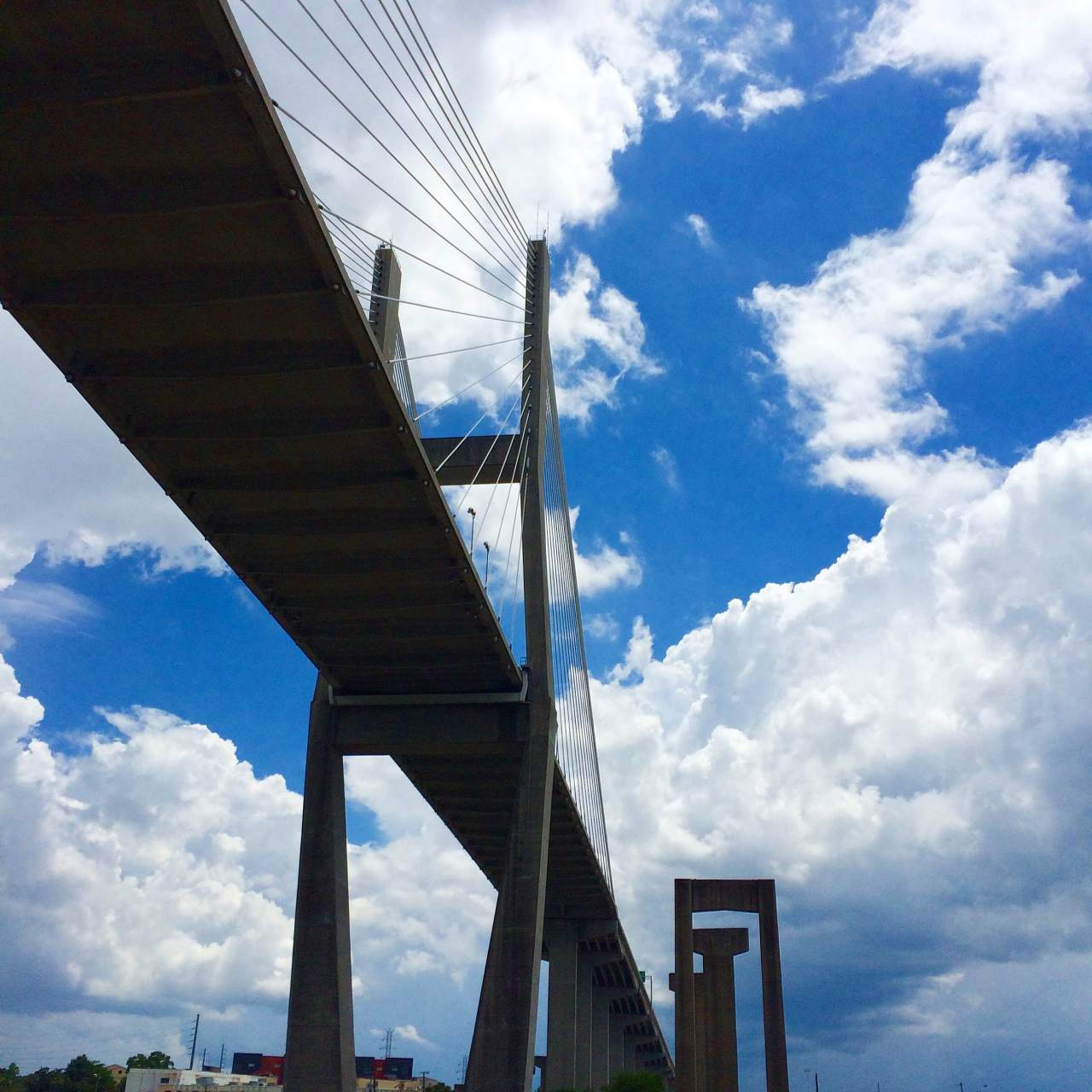Today's On The Go Photo: Reaching New Heights in Savannah